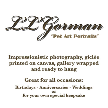 Pet Art Portraits Giclee Printed on Canvas